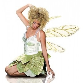 Golden Fairy Wings